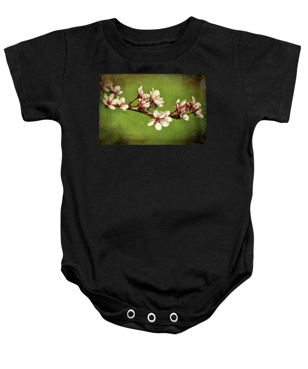 Flower Baby Onesie featuring the photograph Plum Blossom 4 by Dawn Dasharion