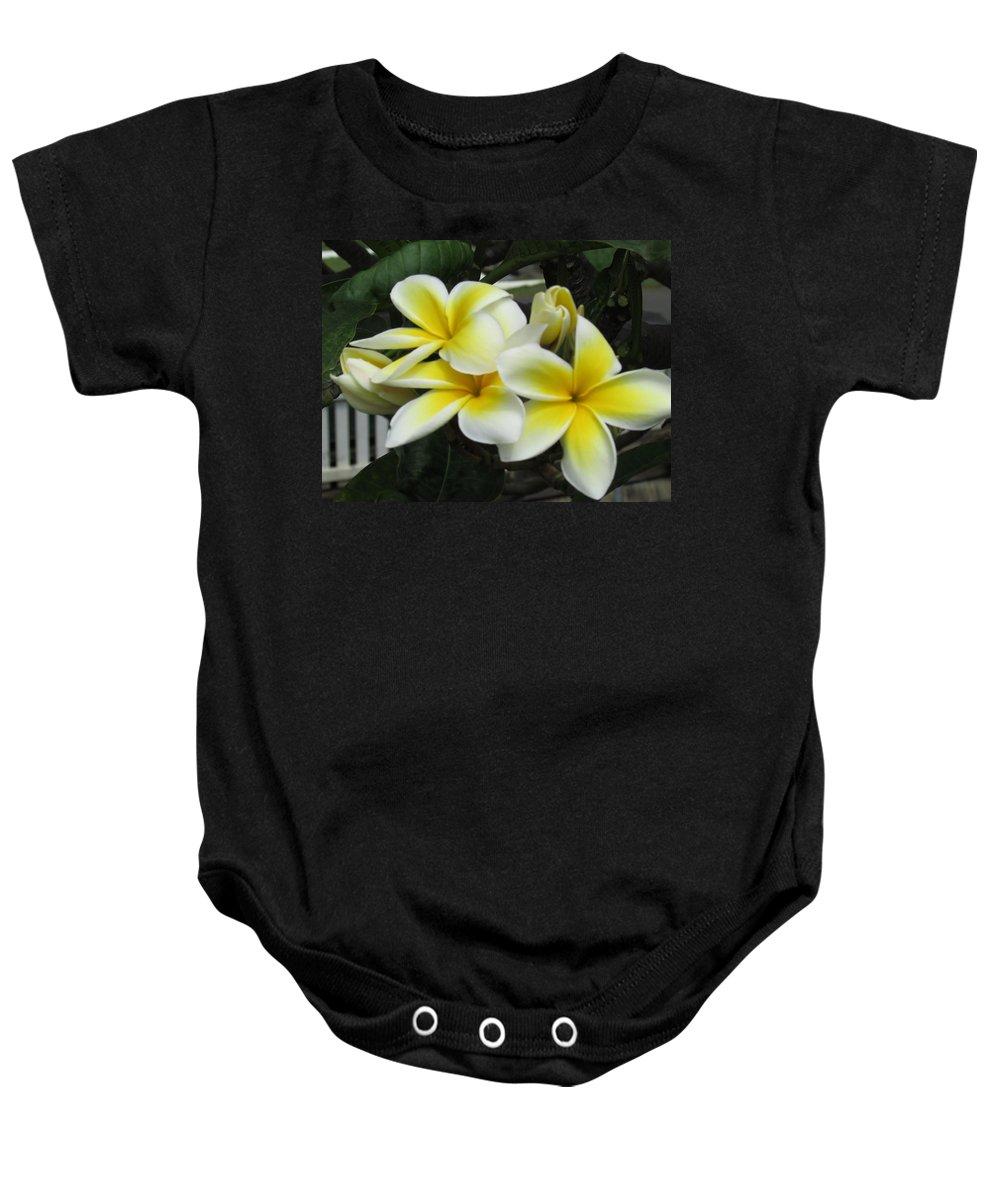 Hawaiian Hawaii Plumeria Flowers Baby Onesie featuring the photograph Plumeria In Yellow 3 by Huery Talbert