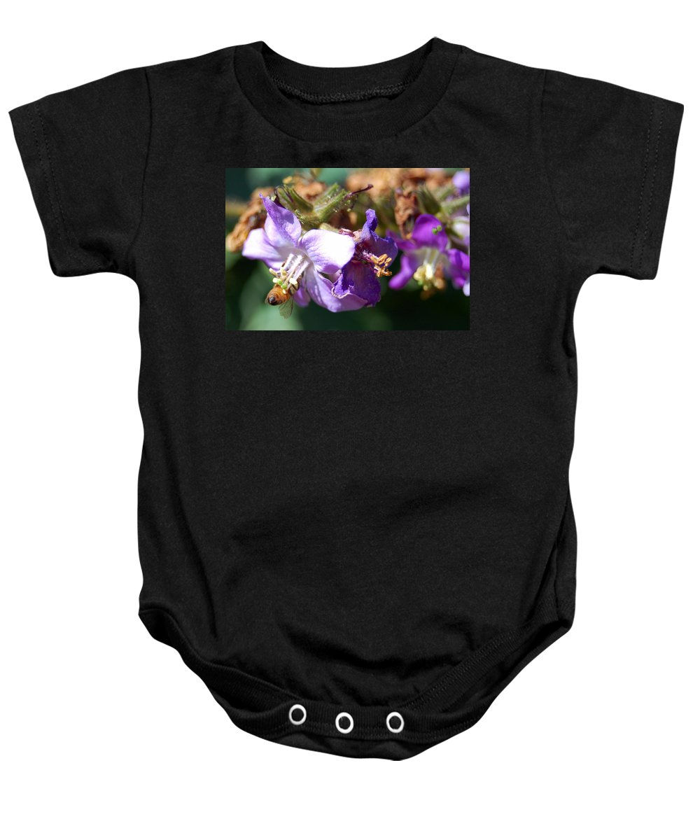 Bee Baby Onesie featuring the photograph Pollinating 3 by Amy Fose