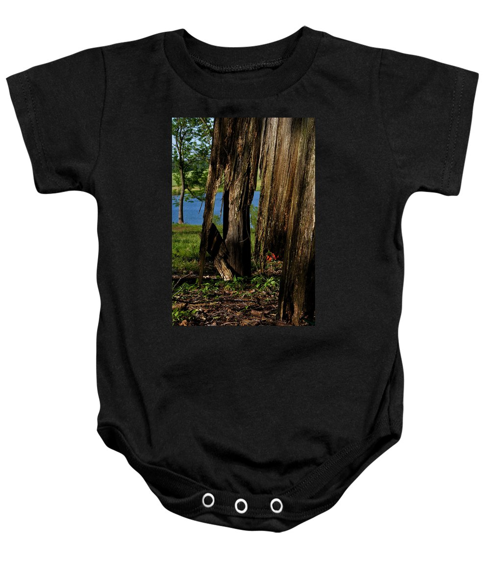 Landscape Baby Onesie featuring the photograph Pond Fragments by Rachel Christine Nowicki