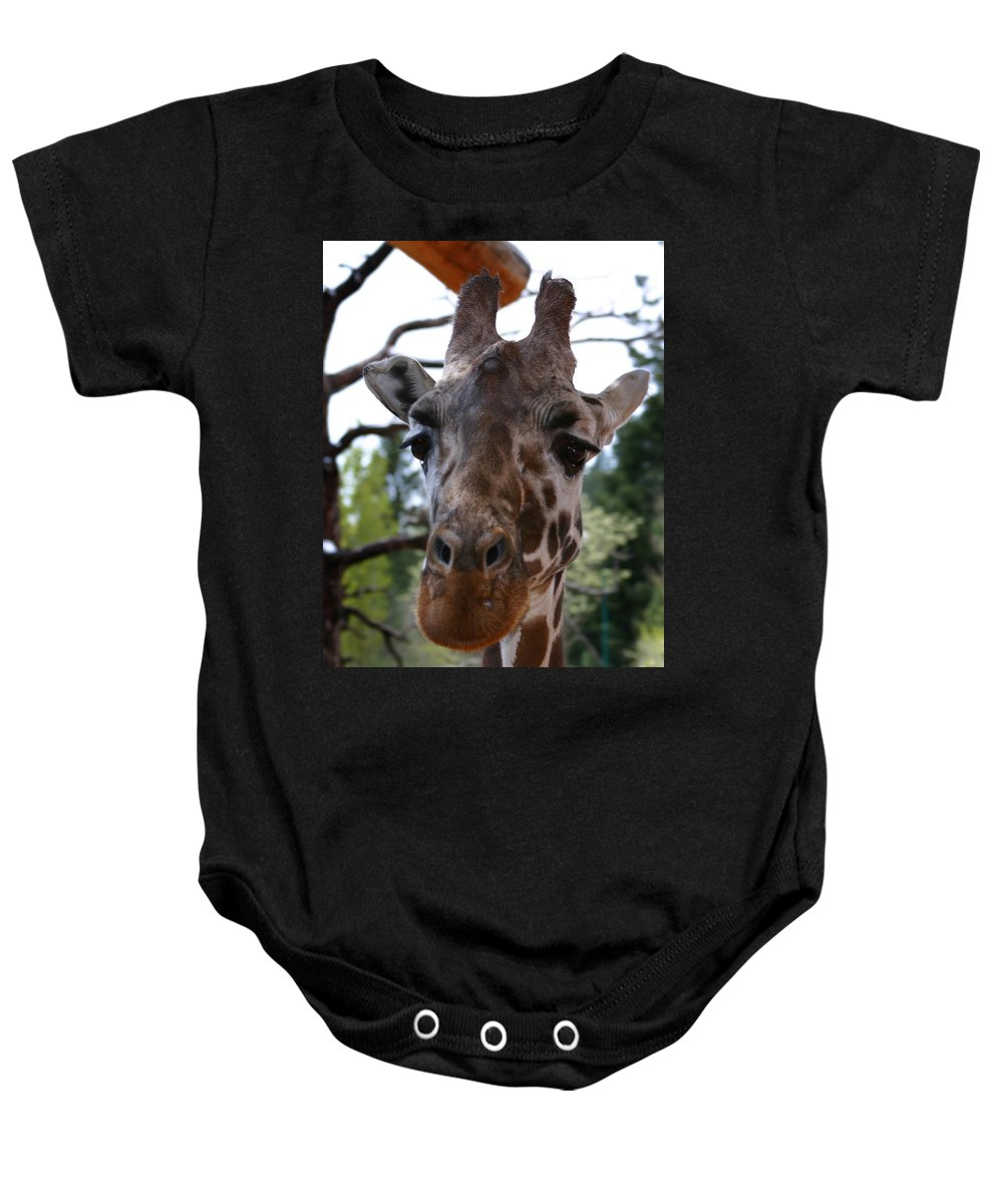 Giraffe Baby Onesie featuring the photograph Portrait Of A Giraffe by Anthony Jones