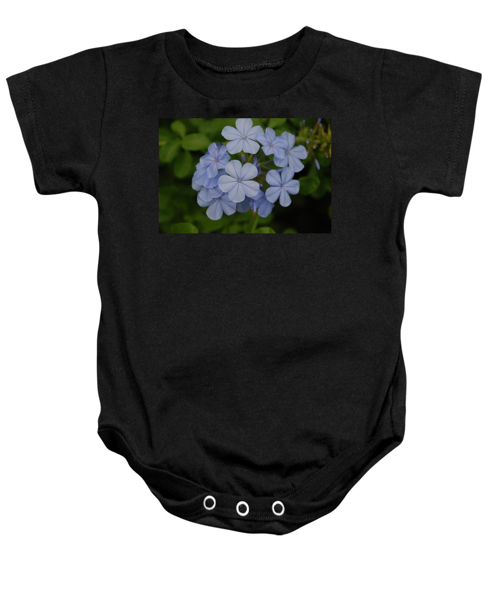 Macro Baby Onesie featuring the photograph Powder Blue Flowers by Rob Hans