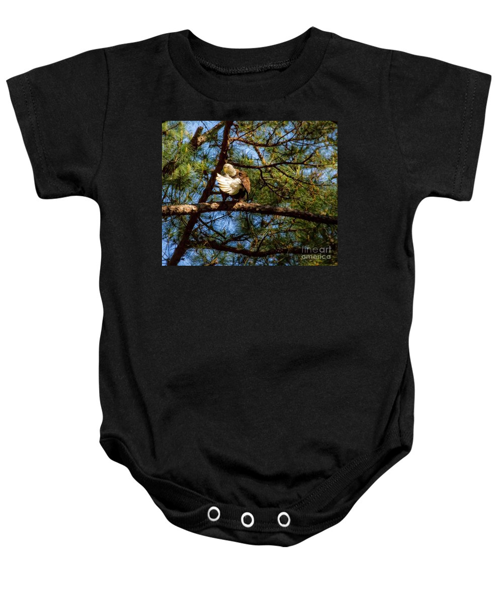 Preening Bald Eagle On A Branch Baby Onesie featuring the photograph Preening Bald Eagle by Warrena J Barnerd