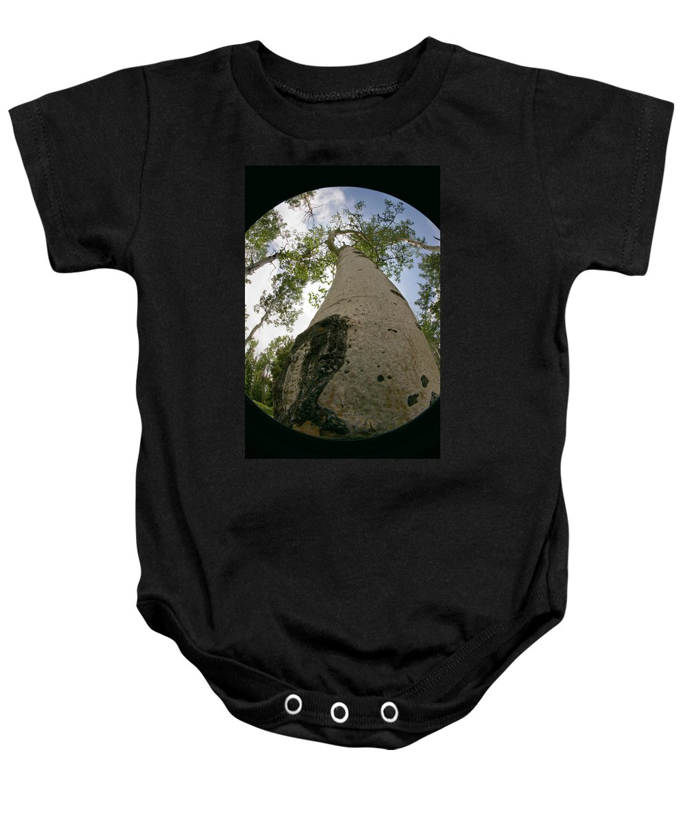 Nature Baby Onesie featuring the photograph Proud Aspen by Jeffery Ball