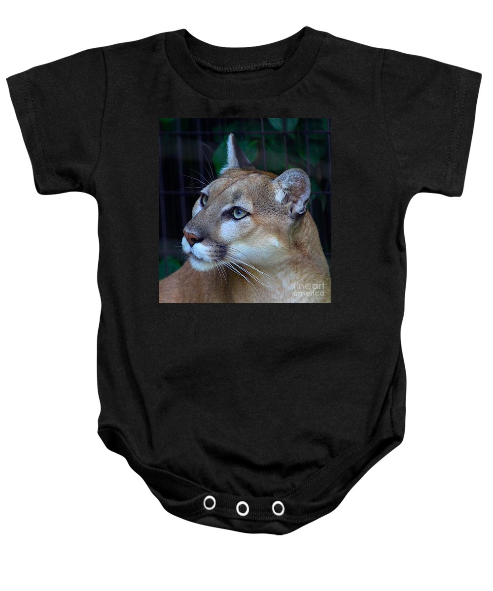 Puma Baby Onesie featuring the photograph Puma-2 by Robert Pearson