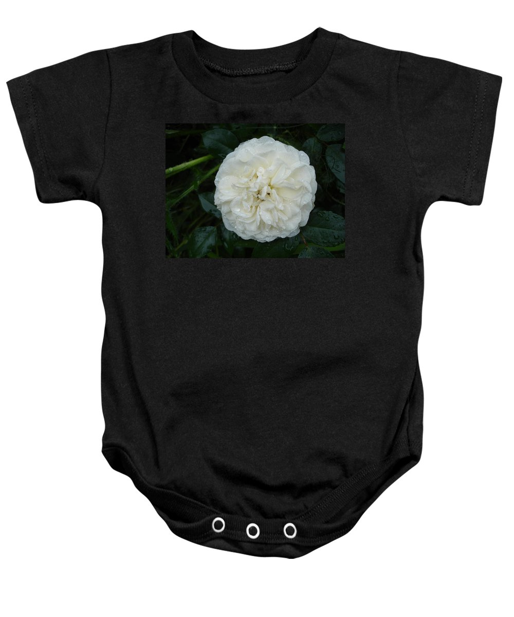 Rose Baby Onesie featuring the photograph Purity And Perfection by Susan Baker