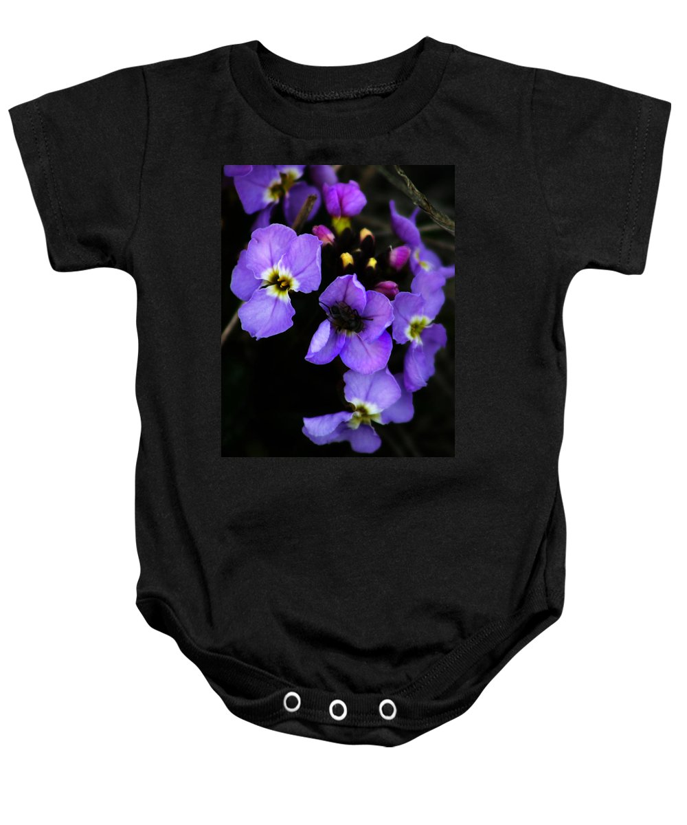 Flowers Baby Onesie featuring the photograph Purple Arctic Wild Flowers by Anthony Jones