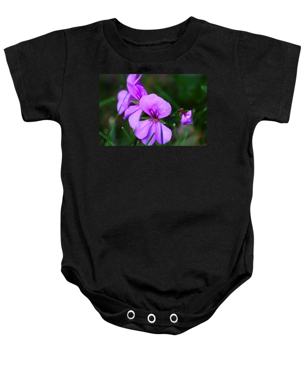 Flowers Baby Onesie featuring the photograph Purple Flowers by Anthony Jones