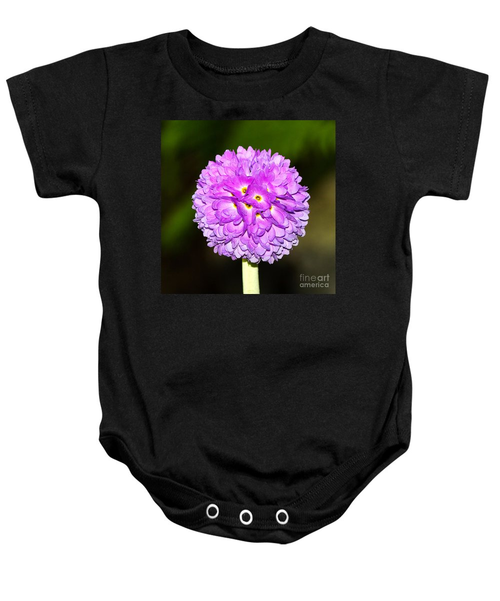 Flower Baby Onesie featuring the photograph Purple Himalayan Primrose by Louise Heusinkveld
