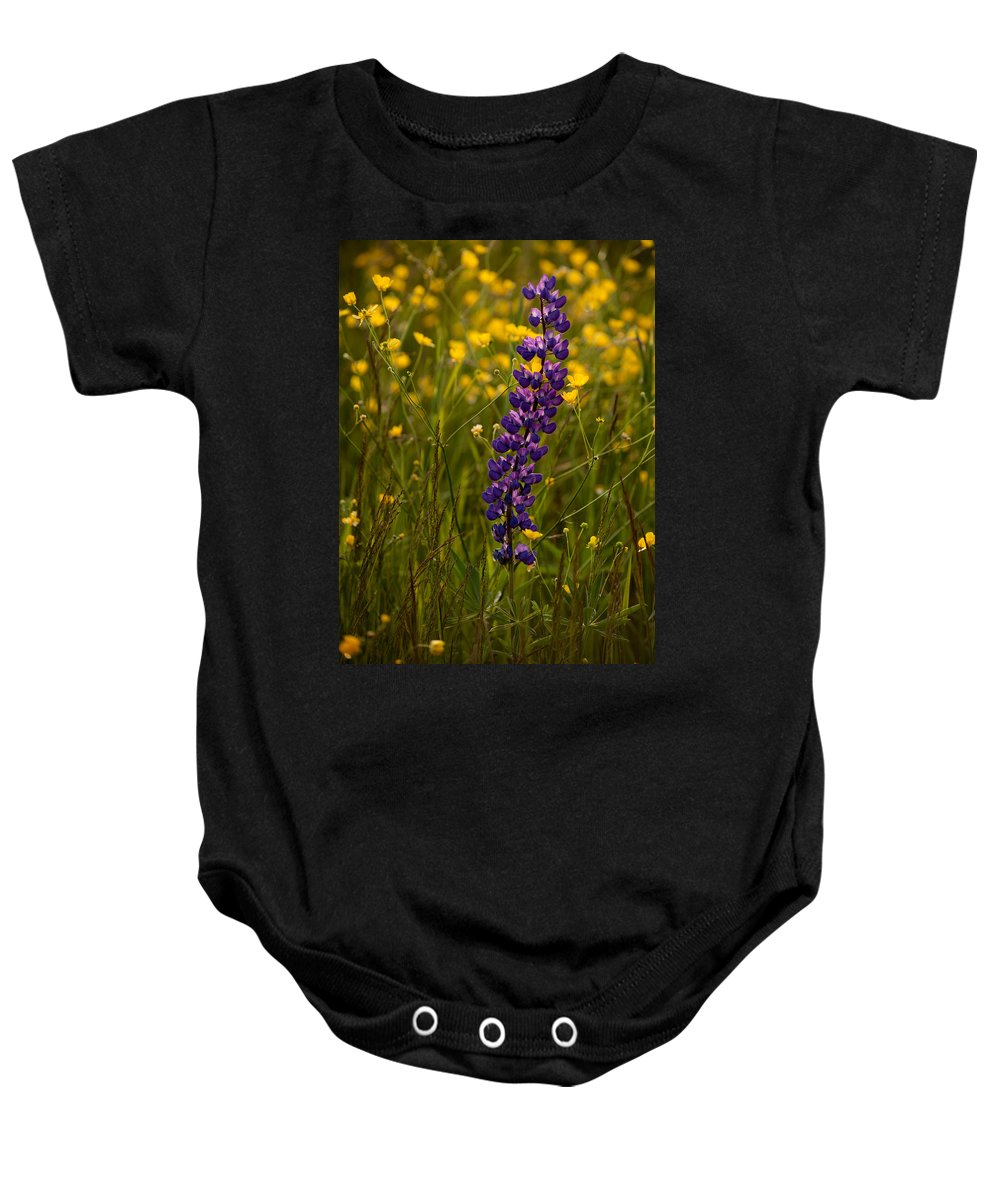 Wildflowers Baby Onesie featuring the photograph Purple Lupin And Buttercups by Irwin Barrett
