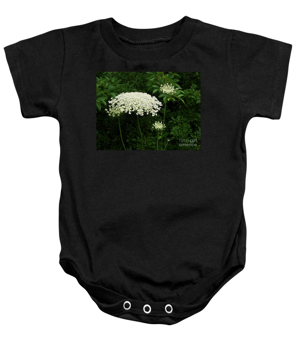 Queen Baby Onesie featuring the photograph Queen Ann's Lace by Priscilla Richardson