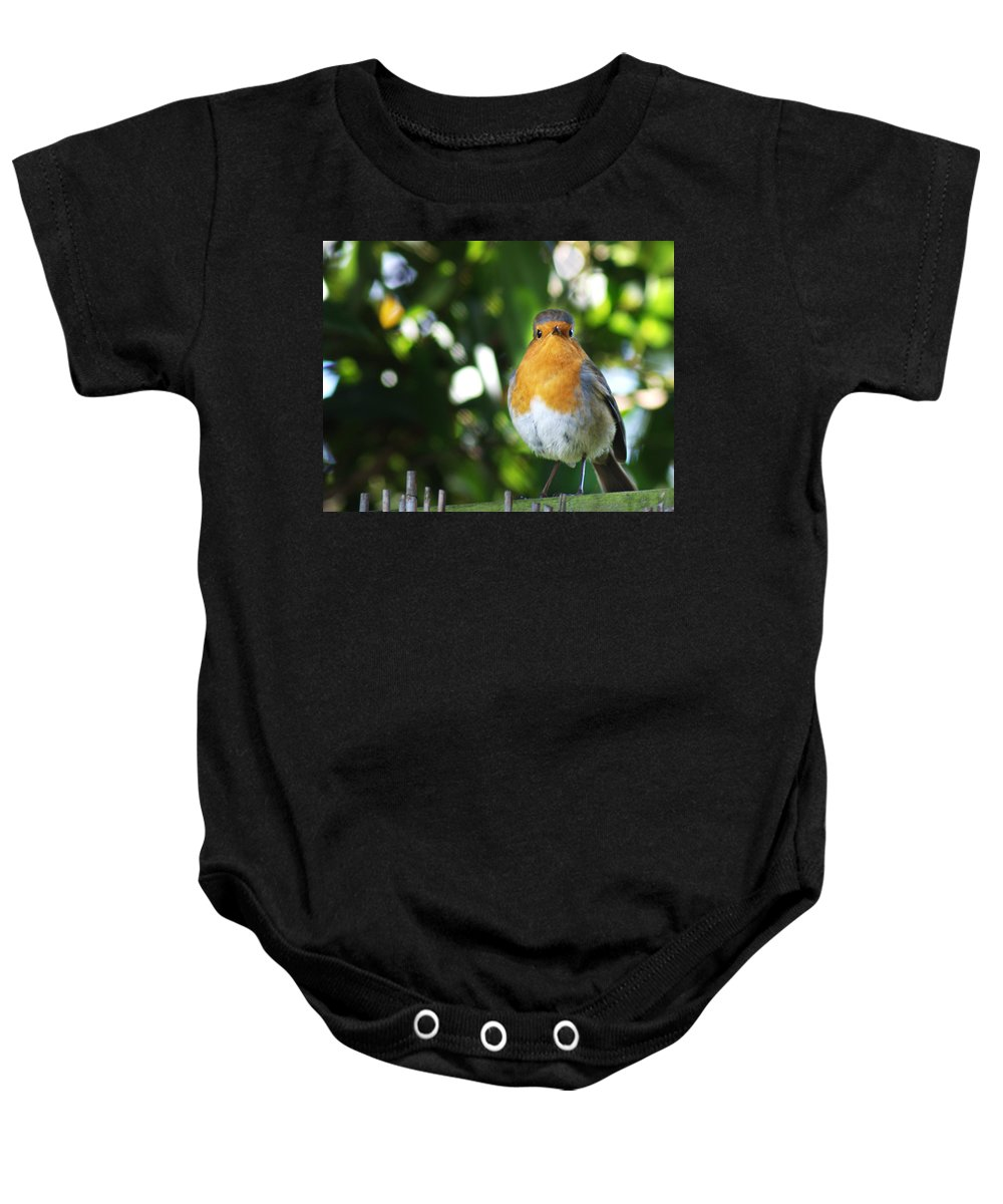 Robin Baby Onesie featuring the photograph Quizzical Robin by Chris Day