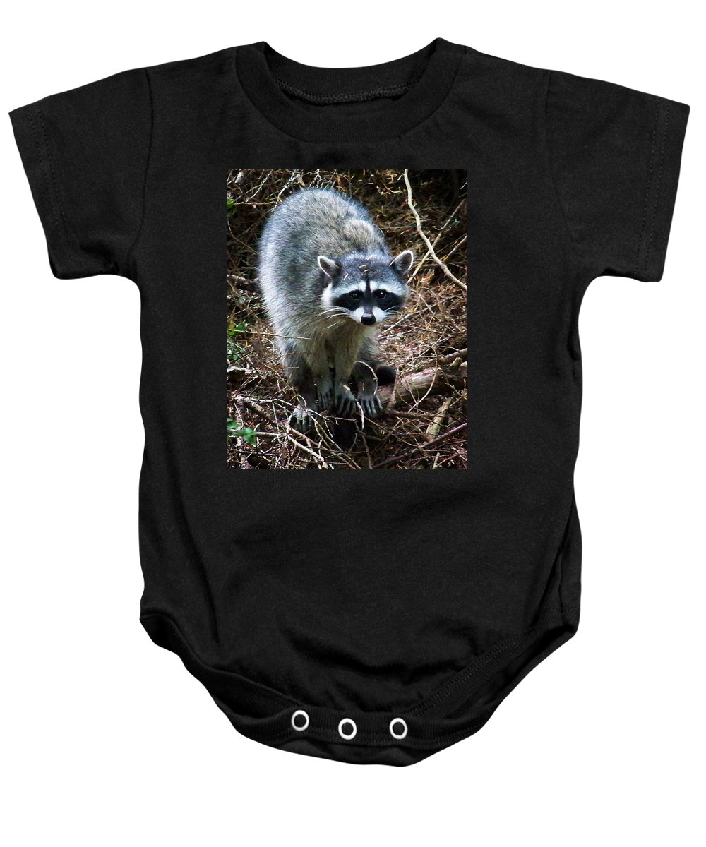Painting Baby Onesie featuring the photograph Raccoon by Anthony Jones