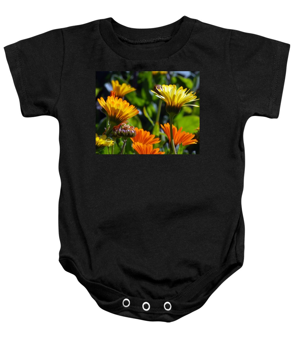Flower Baby Onesie featuring the photograph Reach For The Sun 1 by Amy Fose
