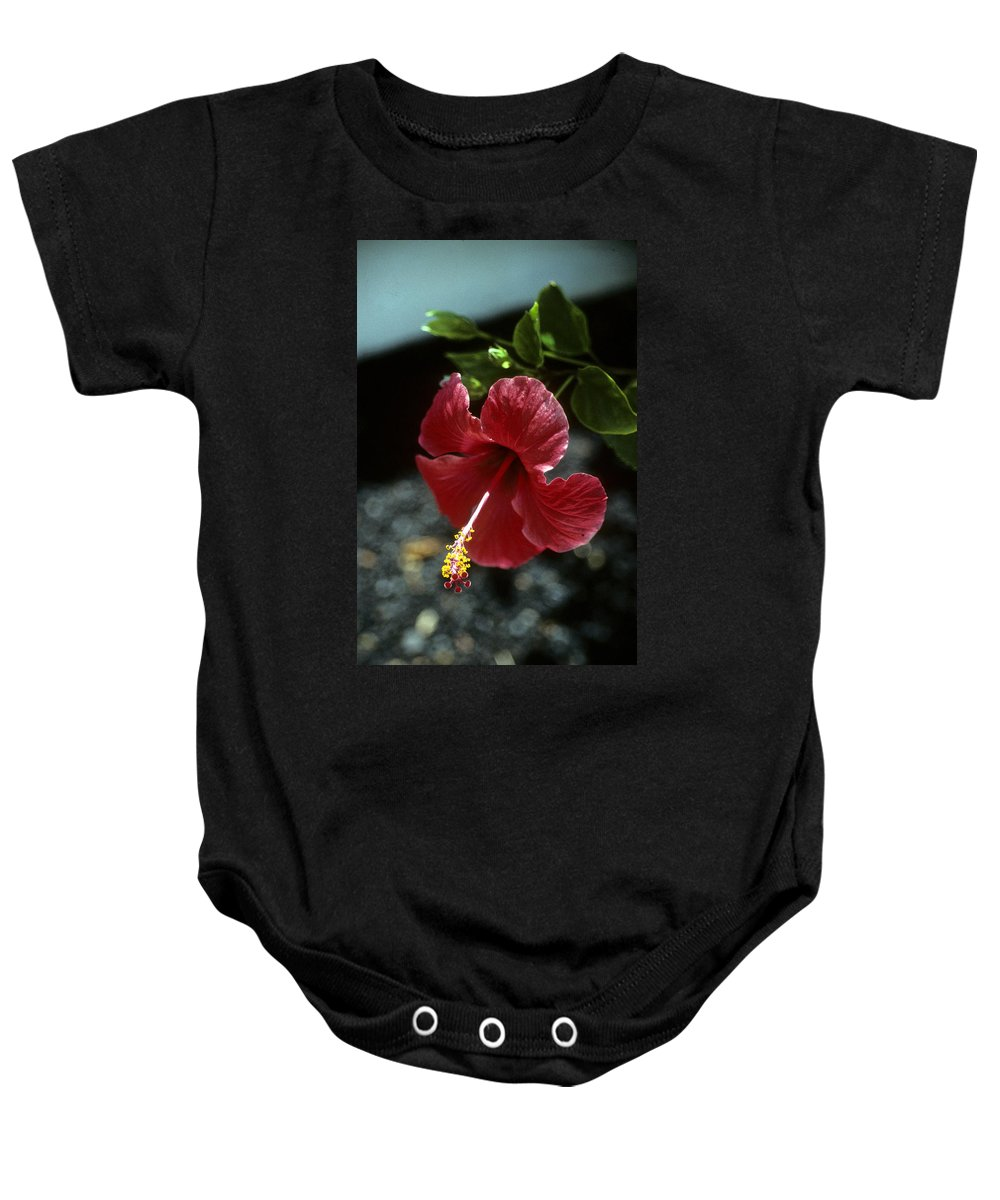 Orchid Baby Onesie featuring the photograph Ready For Picking by Gary Wonning