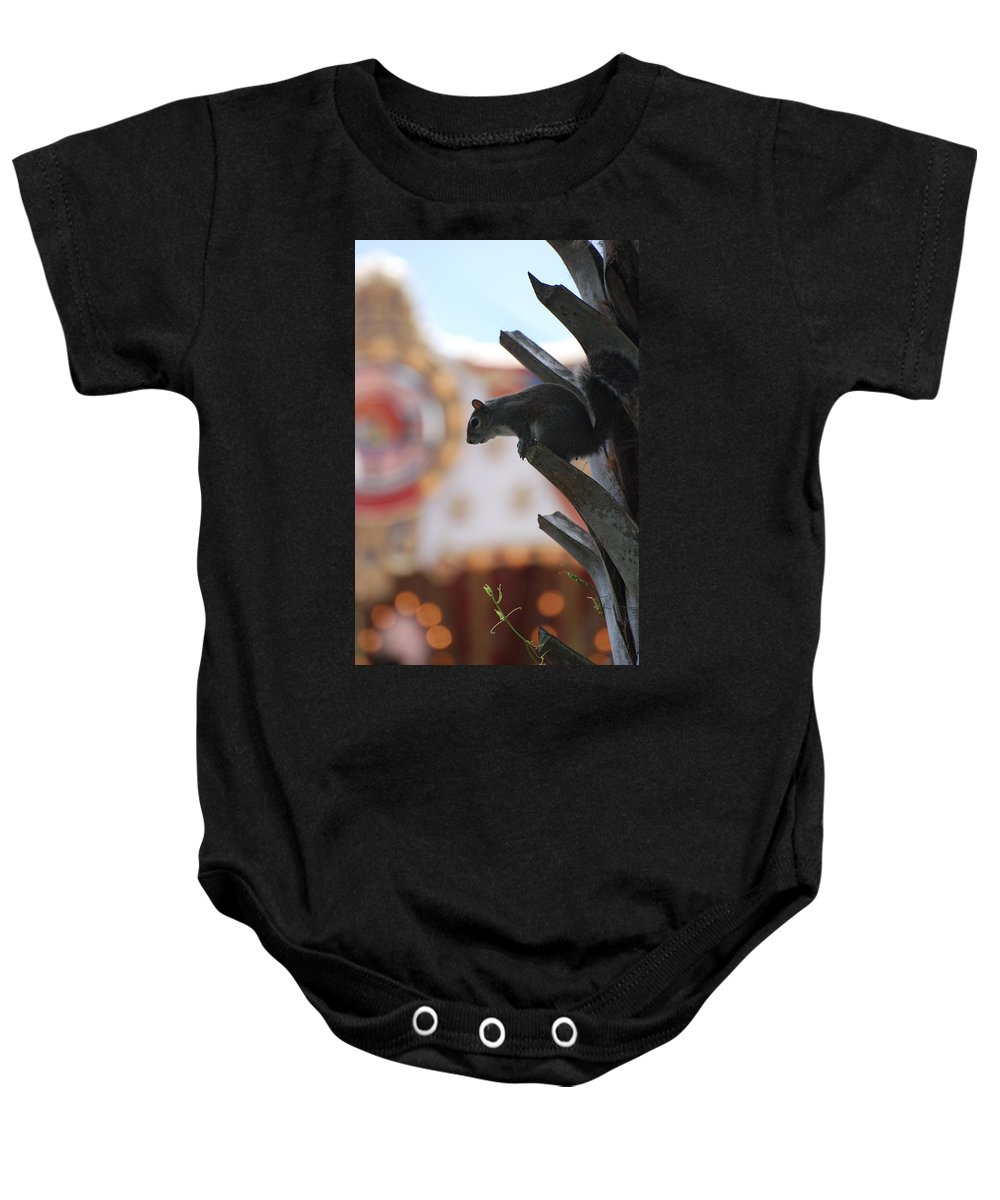 Squirrel Baby Onesie featuring the photograph Ready To Jump by Rob Hans