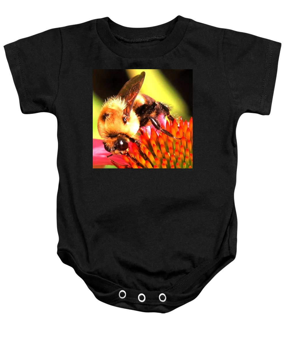 Bee Baby Onesie featuring the photograph Really Getting Into It by Ian MacDonald