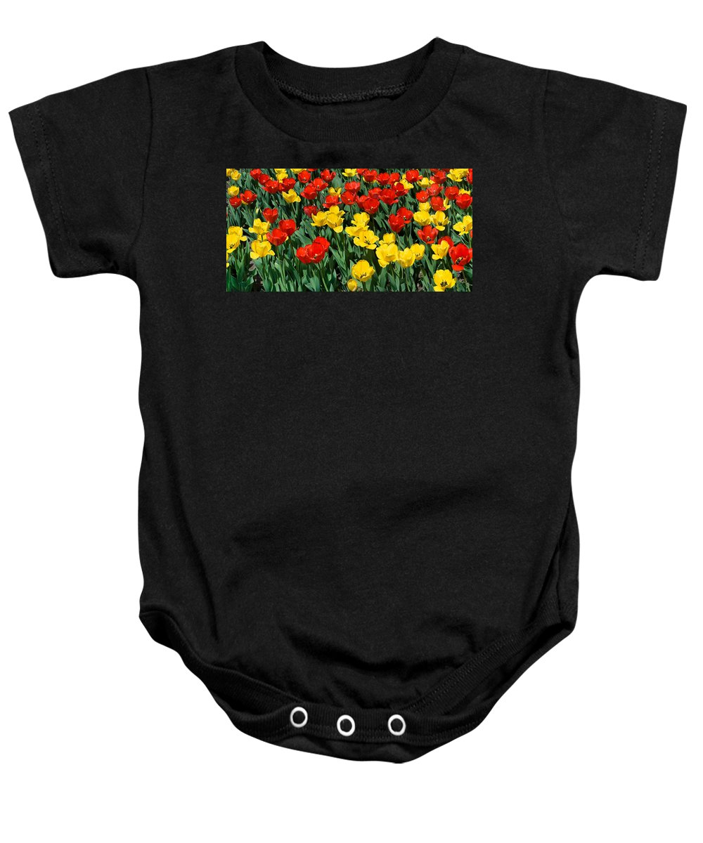 Red Baby Onesie featuring the photograph Red And Yellow Tulips Naperville Illinois by Michael Bessler