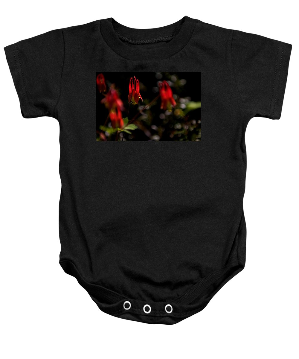 floral Beauty Baby Onesie featuring the photograph Red Blaze by Paul Mangold
