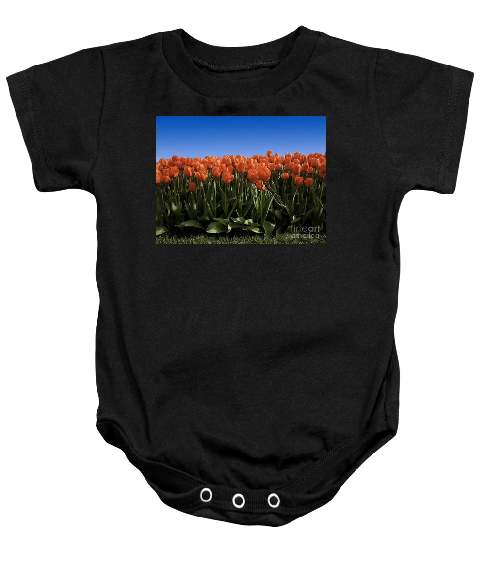 Garden Baby Onesie featuring the photograph Red Tulip Garden by Anthony Totah