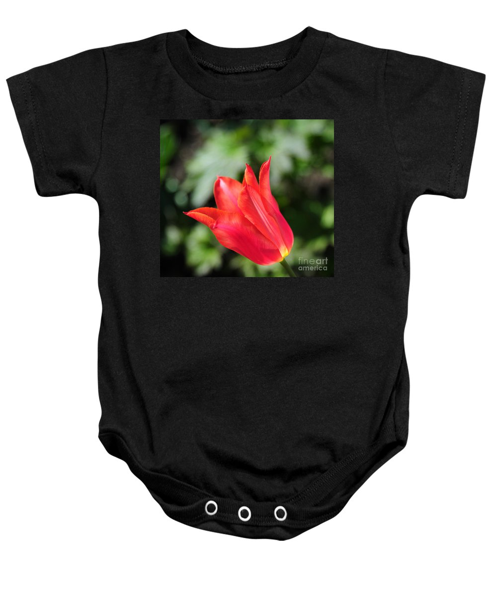 Red Baby Onesie featuring the photograph Red Tulip by Joe Ng
