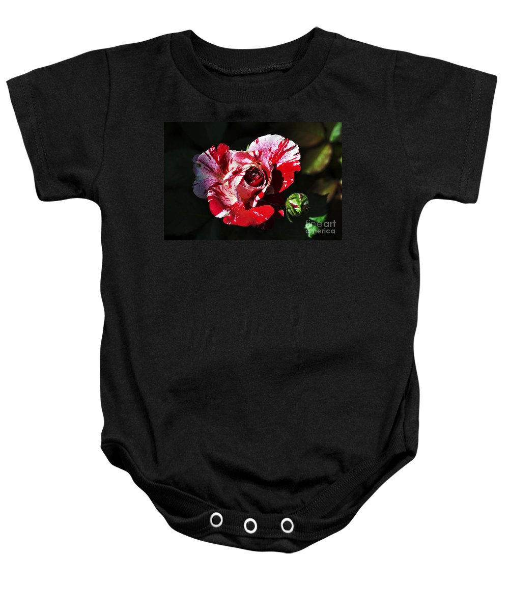 Clay Baby Onesie featuring the photograph Red Verigated Rose by Clayton Bruster