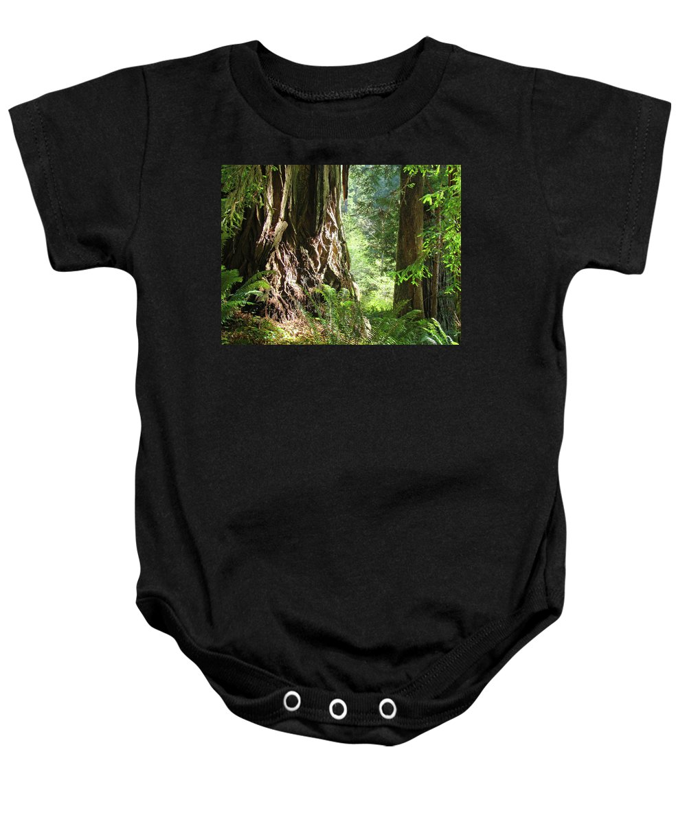 Redwood Baby Onesie featuring the photograph Redwood Tree Art Prints Redwoods Forest by Baslee Troutman