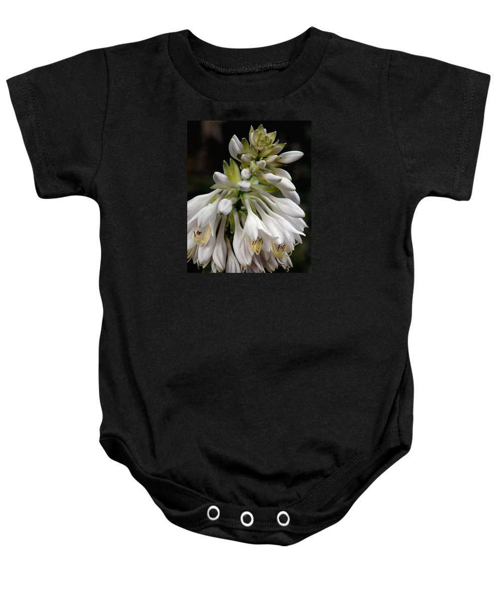 Hosta Baby Onesie featuring the photograph Renaissance Lily by Marie Hicks