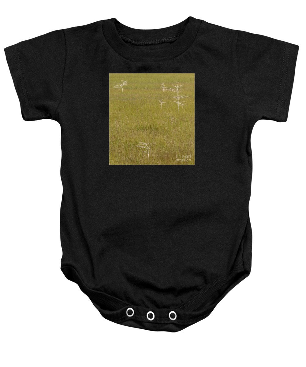 Freshwater Baby Onesie featuring the photograph River Of Grass 1a by Tracy Knauer