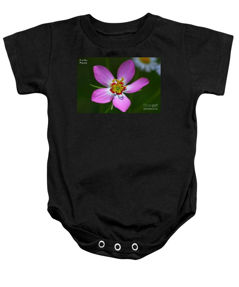 Rose Of Plymouth Baby Onesie featuring the photograph Rose Of Plymouth by Barbara Bowen