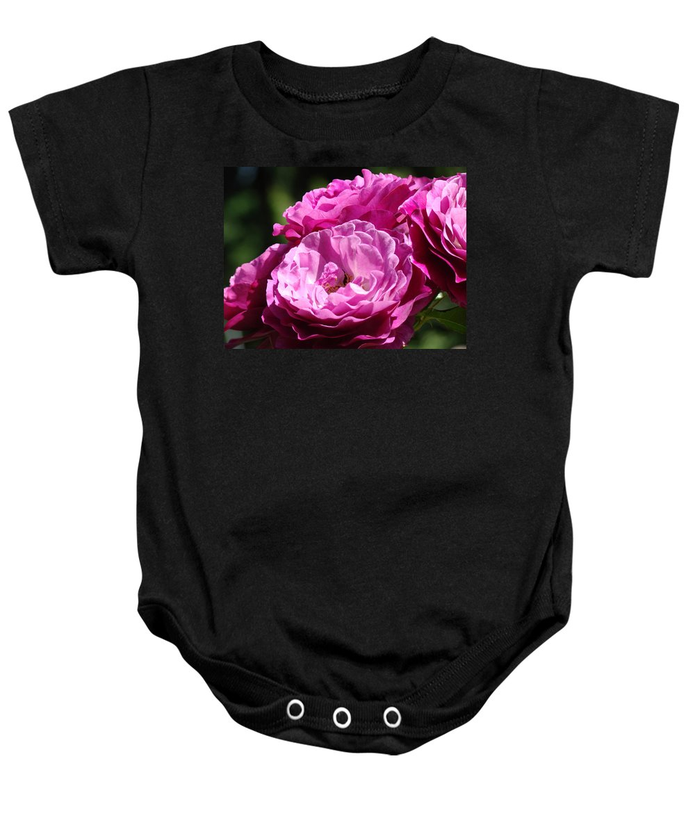 Rose Baby Onesie featuring the photograph Rose Pink Purple Roses Flowers 1 Rose Garden Sunlit Flowers Baslee Troutman by Baslee Troutman