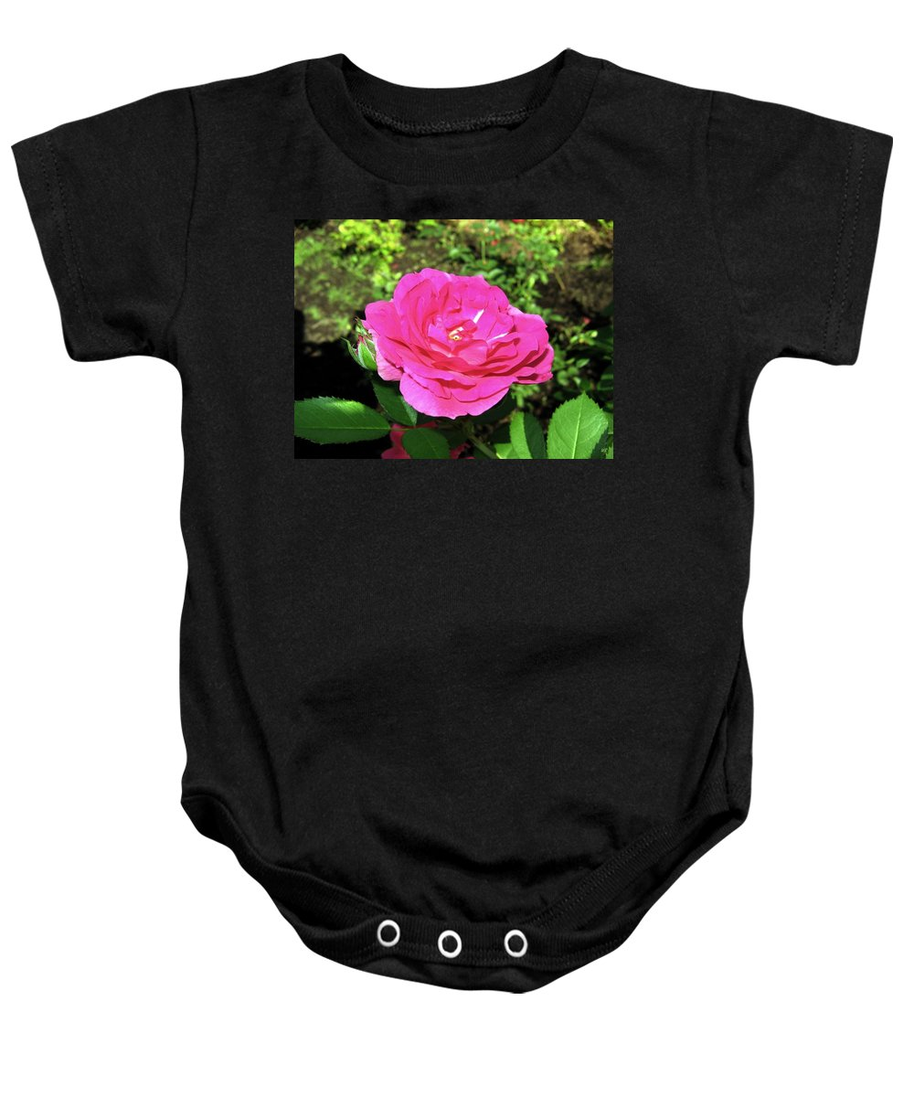 Rose Baby Onesie featuring the photograph Roses 10 by Will Borden