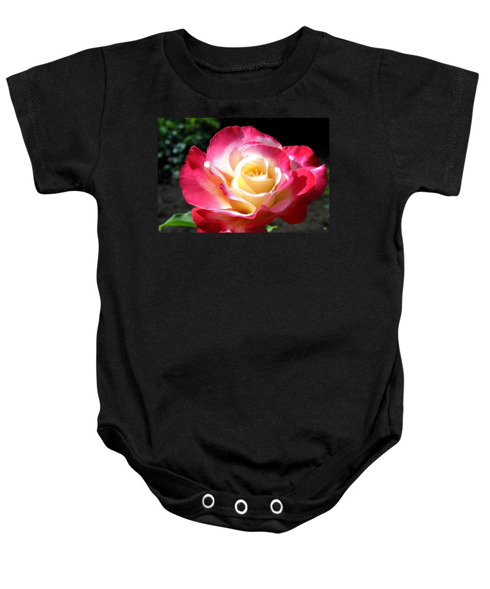 Rose Baby Onesie featuring the photograph Roses 7 by Will Borden