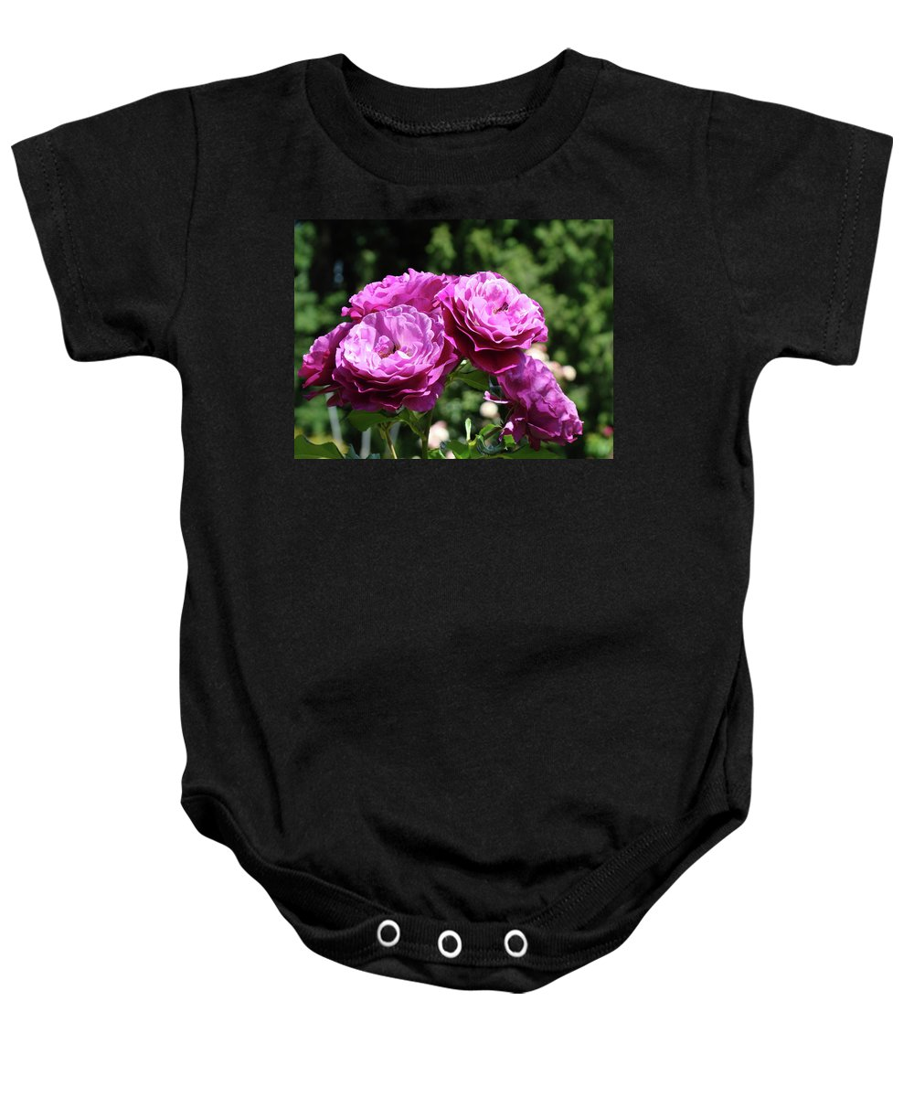 Rose Baby Onesie featuring the photograph Roses Art Rose Garden Pink Purple Floral Prints Baslee Troutman by Baslee Troutman