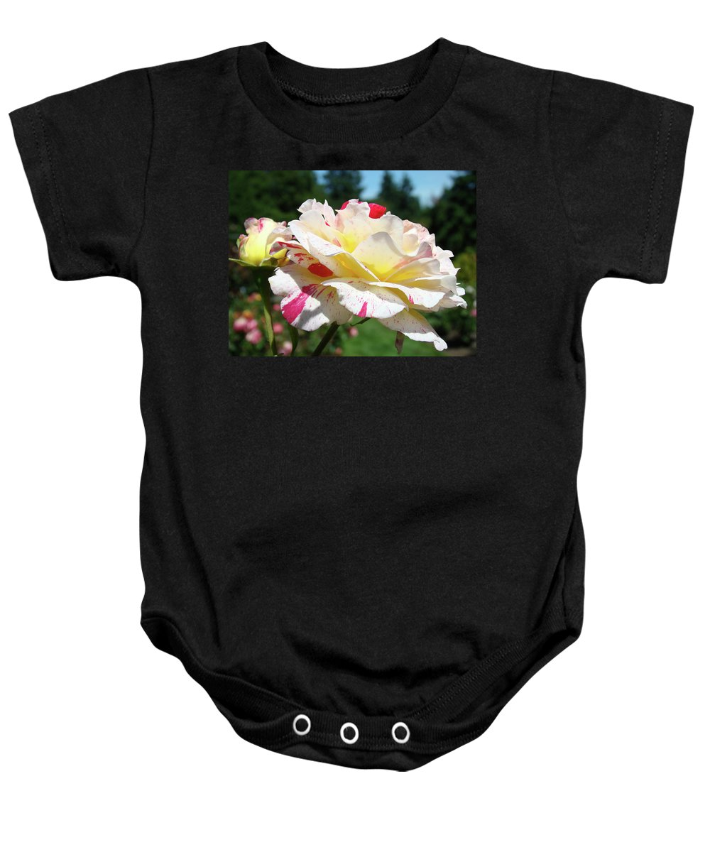 Rose Baby Onesie featuring the photograph Roses White Pink Yellow Rose Flowers 3 Rose Garden Art Baslee Troutman by Baslee Troutman