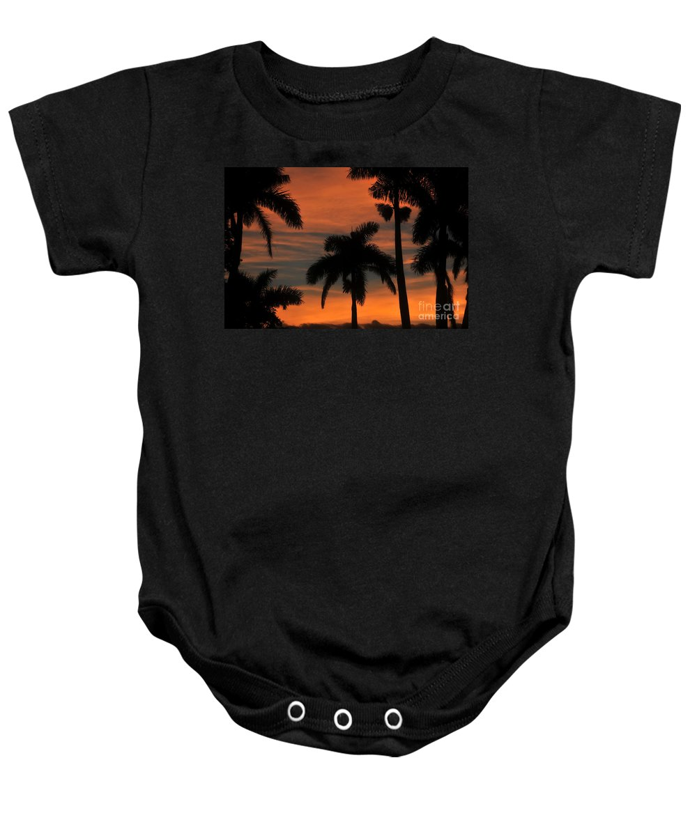 Royal Palm Trees Baby Onesie featuring the photograph Royal Palms by David Lee Thompson
