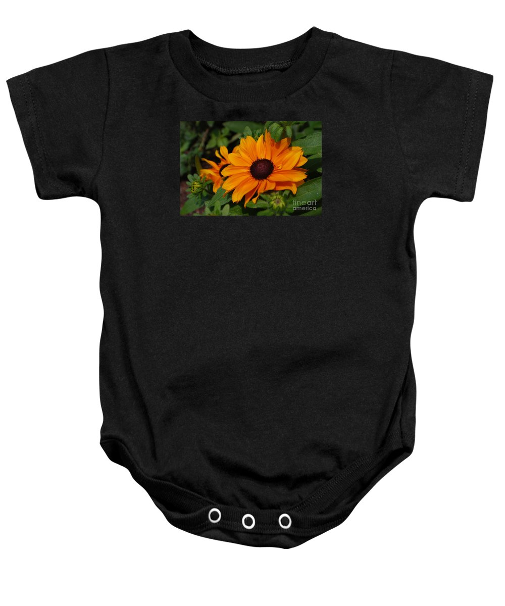 Rudbeckia Baby Onesie featuring the photograph Rudbeckia Flower In Bloom by DejaVu Designs