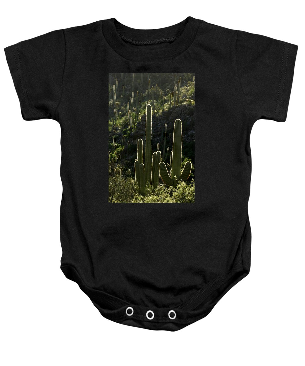 Saguaro Baby Onesie featuring the photograph Saguaro Cactus Backlit by Jill Reger
