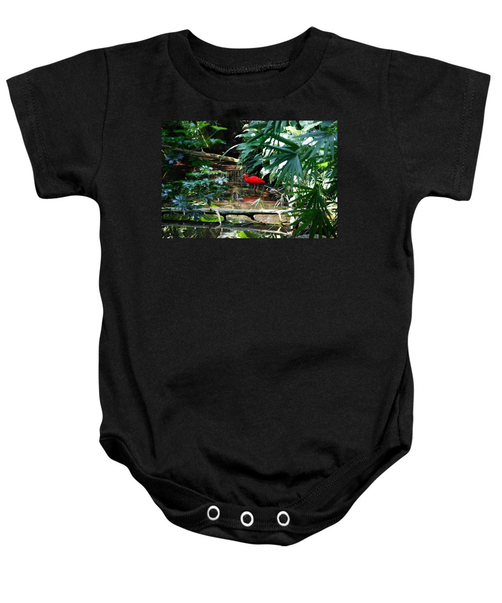 Scarlet Ibis Baby Onesie featuring the photograph Scarlet Ibis by Eric Liller