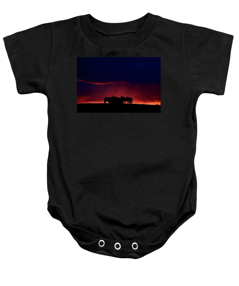 Horses Baby Onesie featuring the digital art Set Sun Silhouetting Horses On Saskatchewan Ridge by Mark Duffy