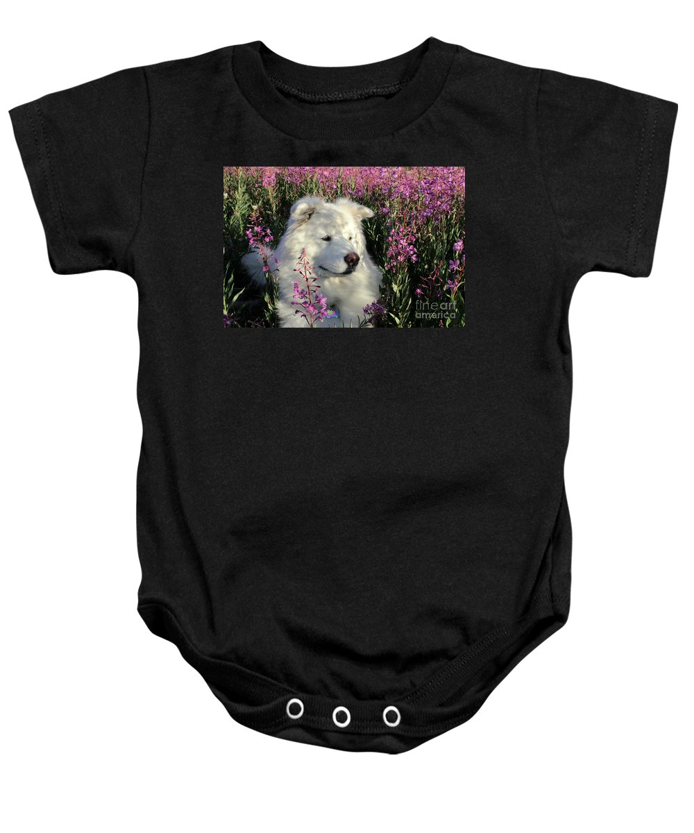 Samoyed Baby Onesie featuring the photograph Shadows by Fiona Kennard