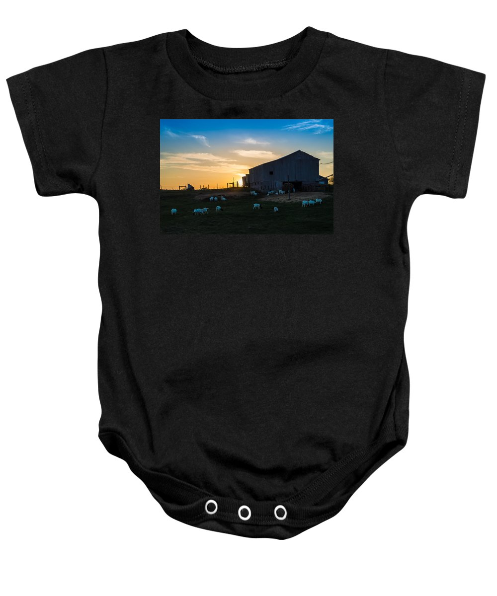 R3d Photography Baby Onesie featuring the photograph Sheep At Sunset by Ray Sheley