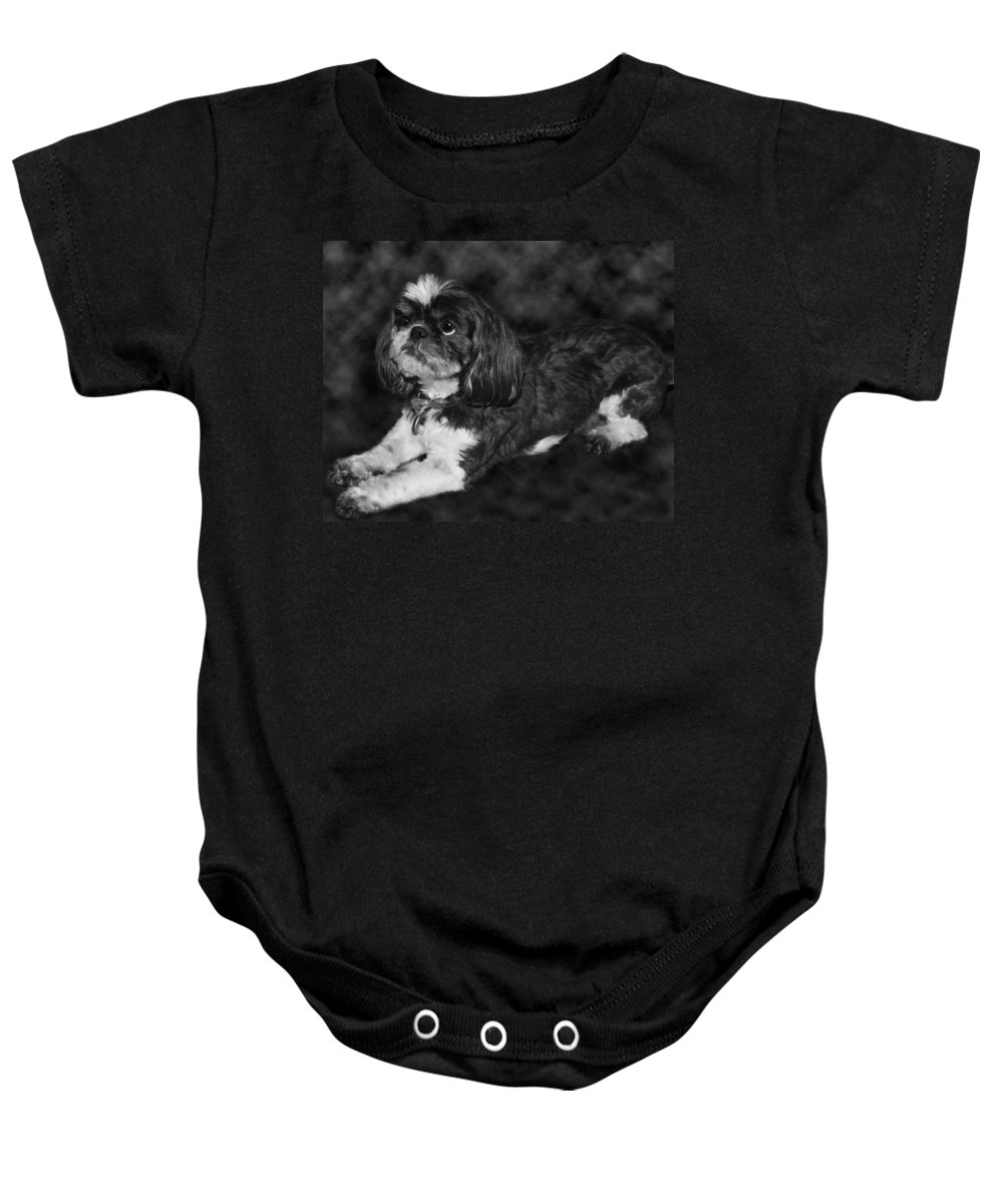 3scape Baby Onesie featuring the painting Shih Tzu by Adam Romanowicz