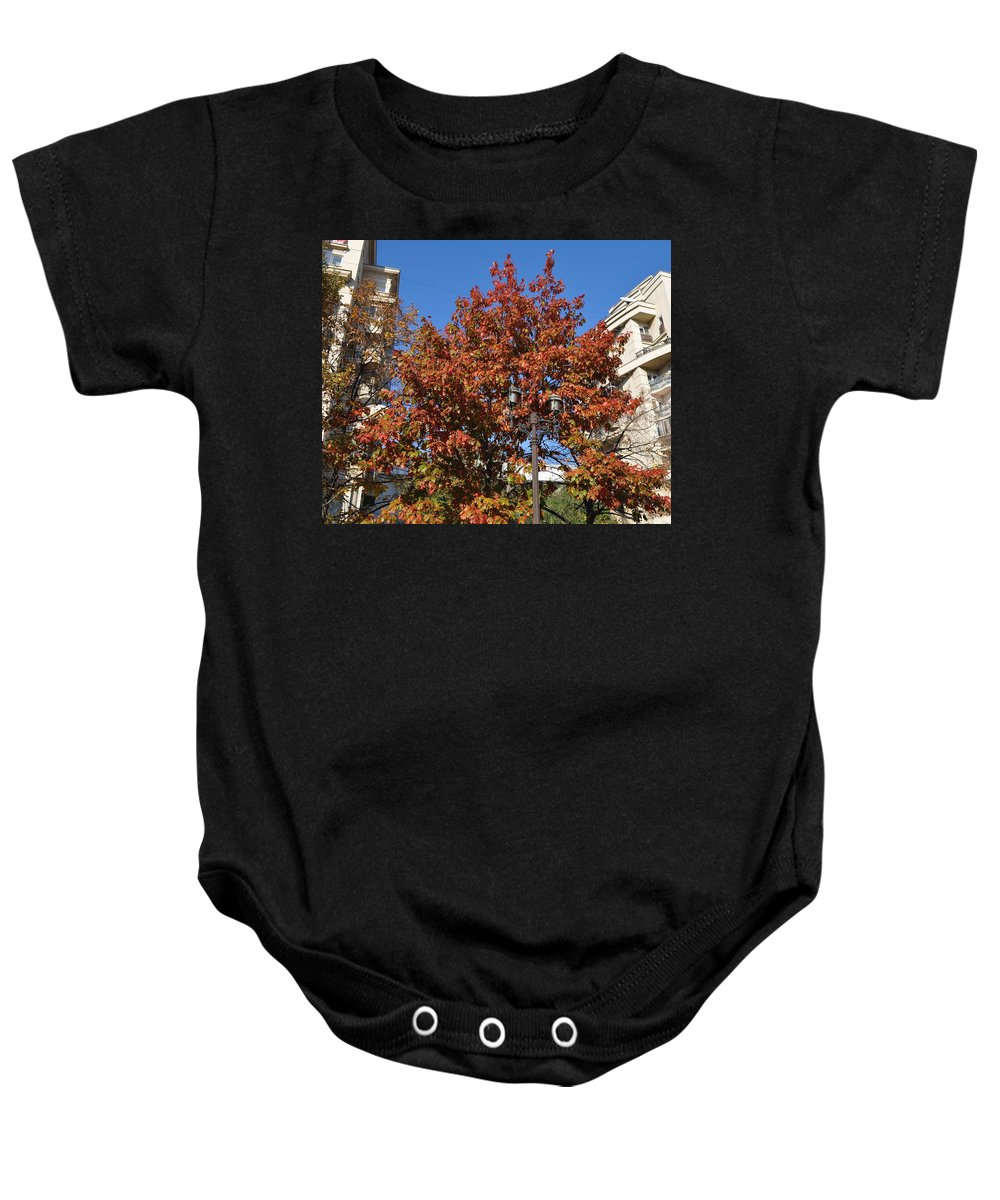 Oak Tree In Autumn Baby Onesie featuring the photograph Shining In City by Georgeta Blanaru