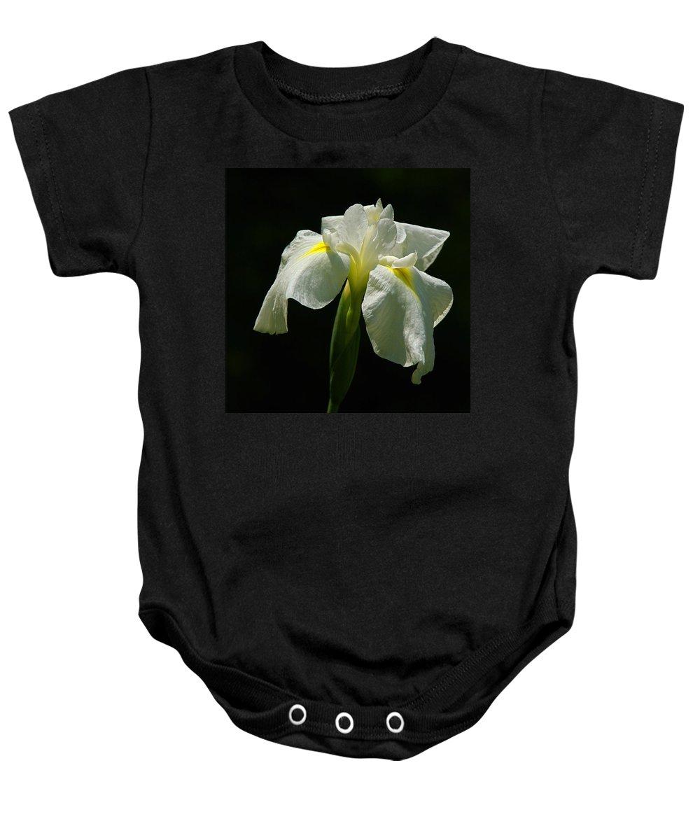 Iris Baby Onesie featuring the photograph Siberian Iris by Byron Varvarigos