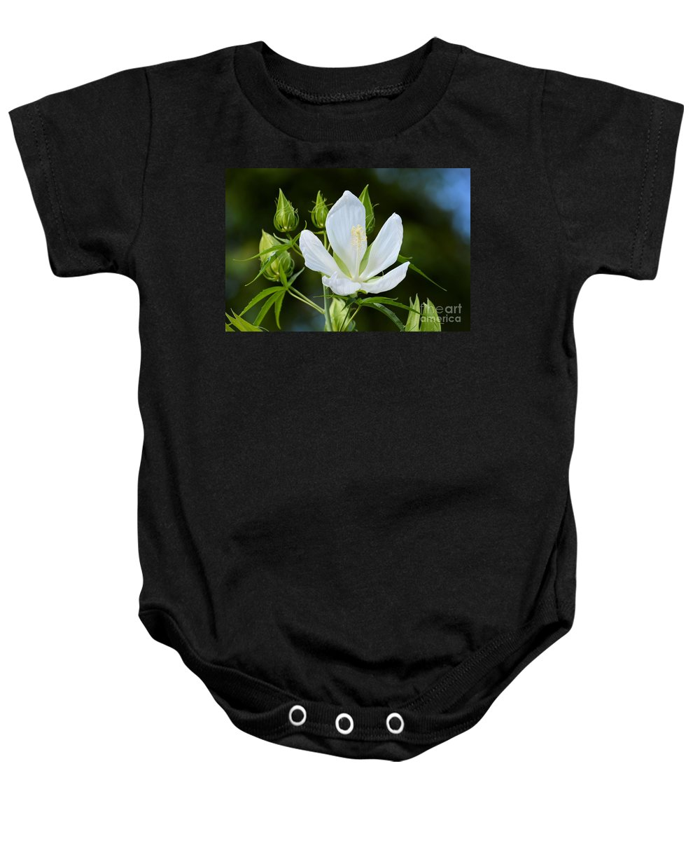 Single Bloom Baby Onesie featuring the photograph Single Bloom by Katherine W Morse