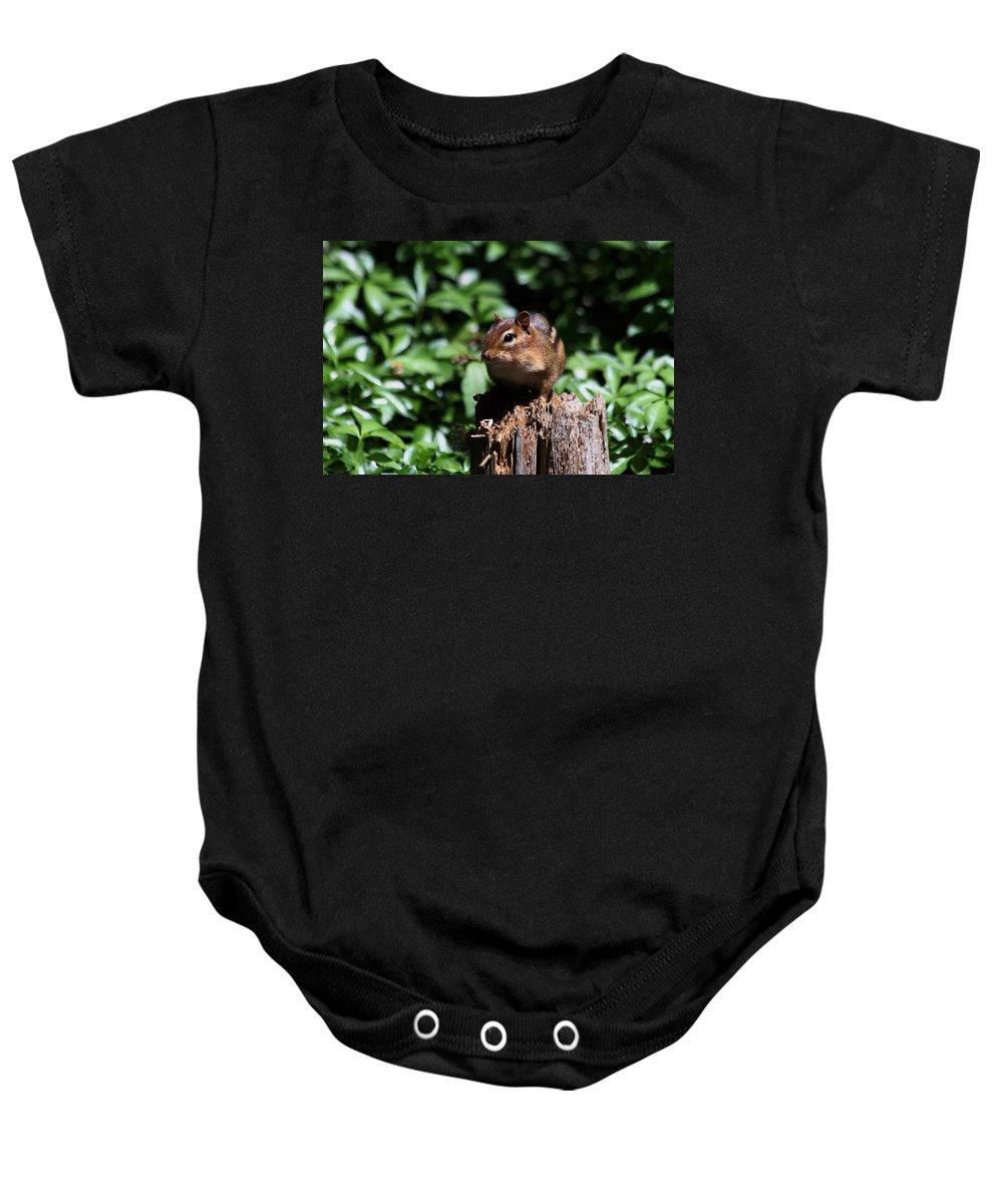 Animal Baby Onesie featuring the photograph Sitting On A Post by Karol Livote