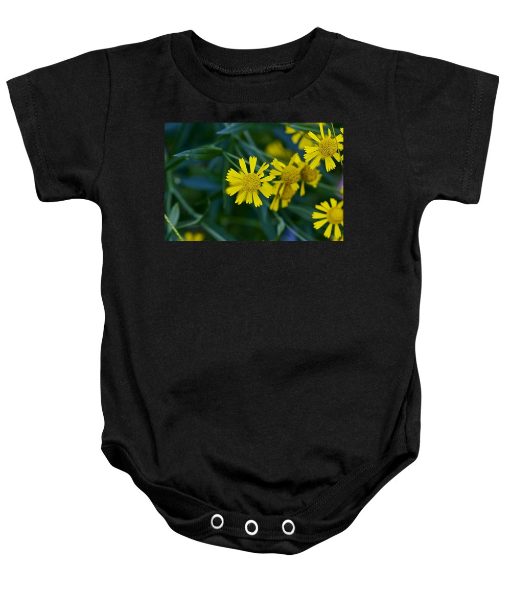 Abstract Baby Onesie featuring the photograph Sneezeweed by Jack R Perry