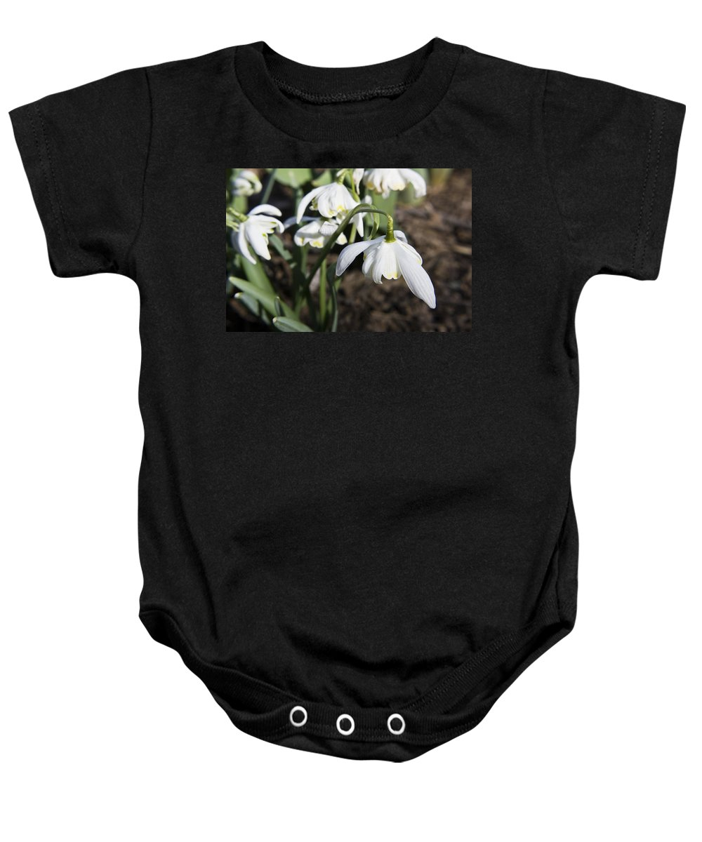 Snowdrops Baby Onesie featuring the photograph Snowdrops by Teresa Mucha