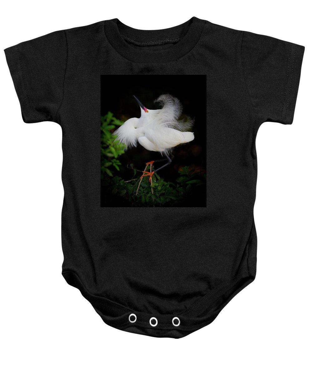 Snowy Egret Baby Onesie featuring the photograph Snowy Egret by Dennis Goodman